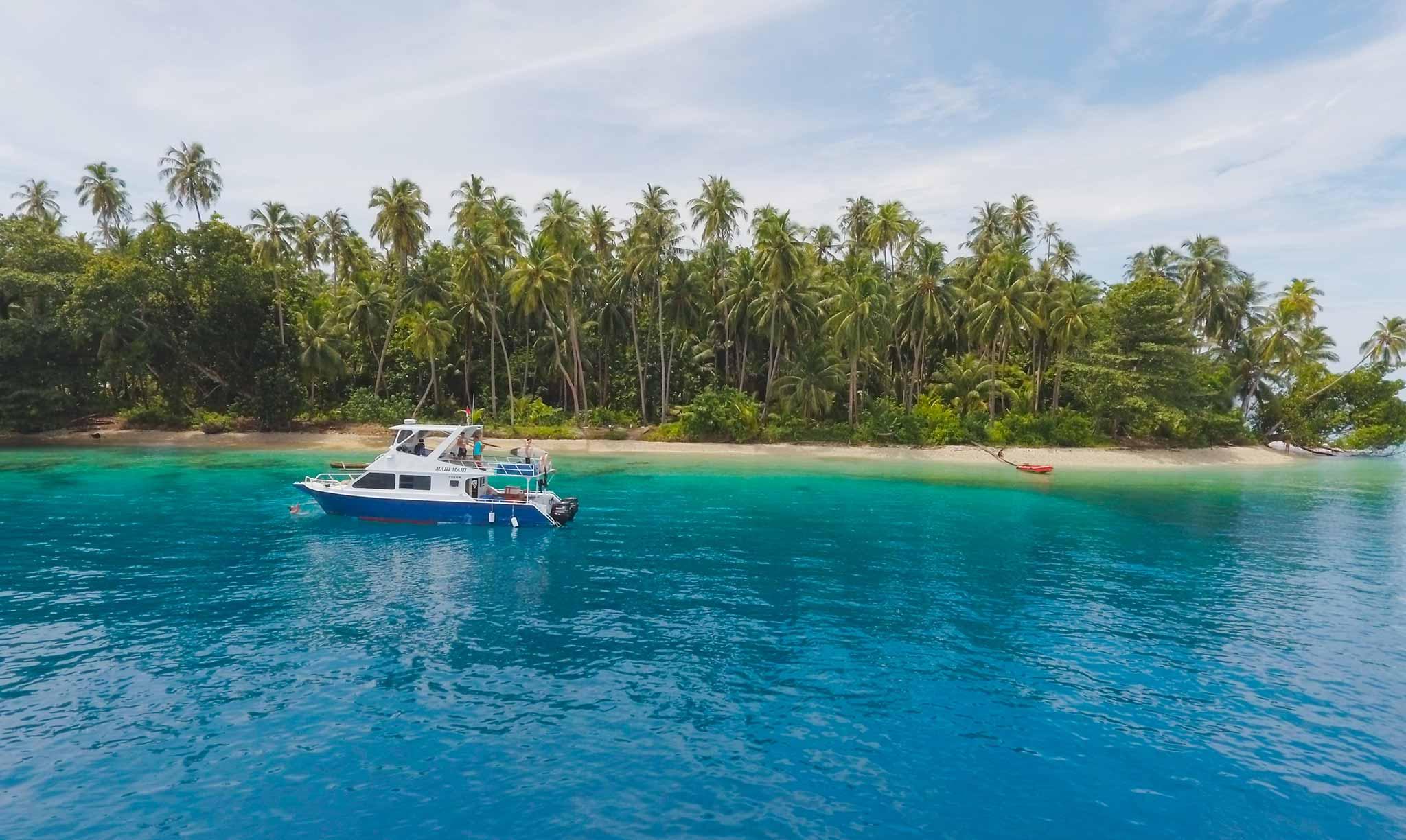 Mahi Mahi Boat 12