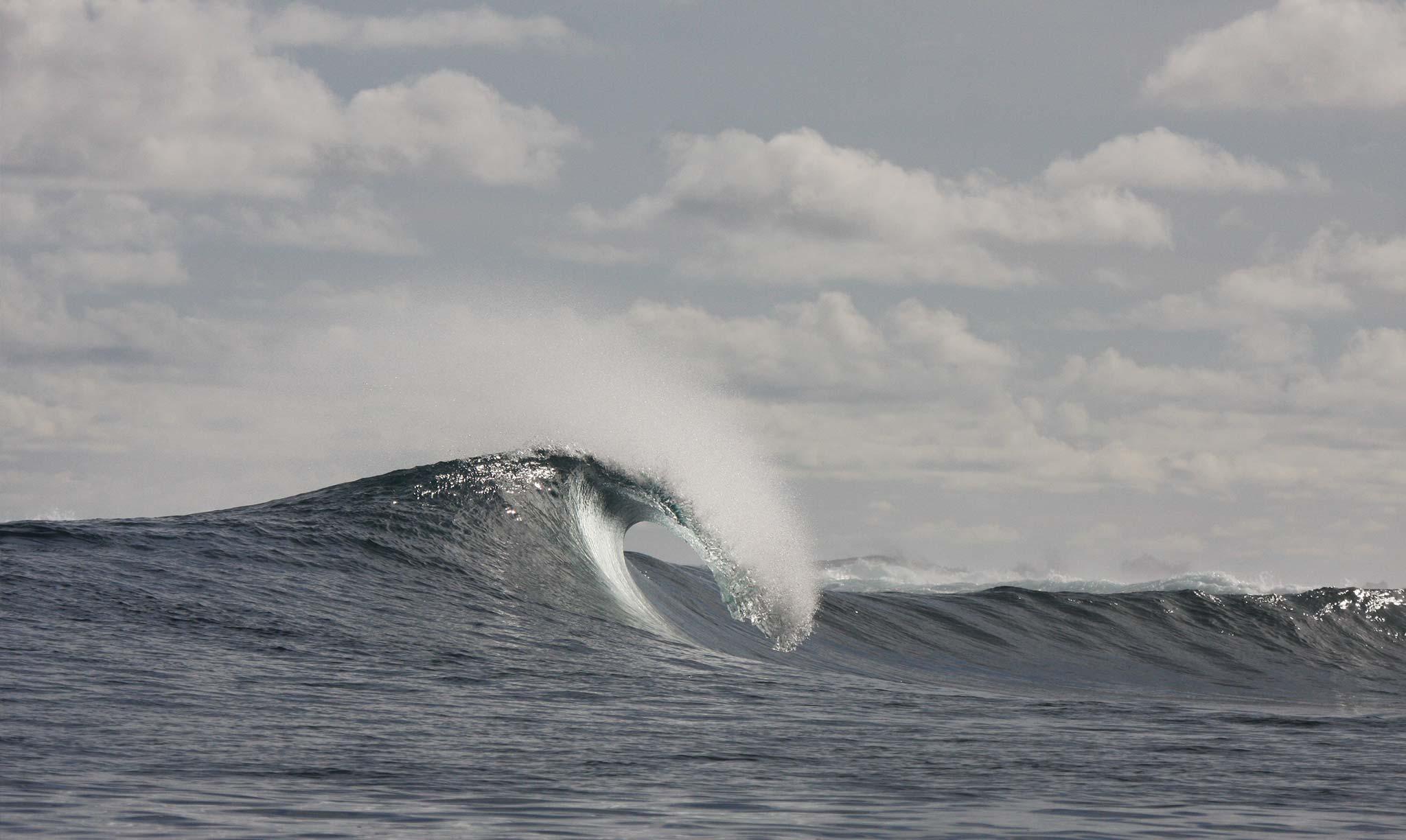 Mahi Mahi Waves 1
