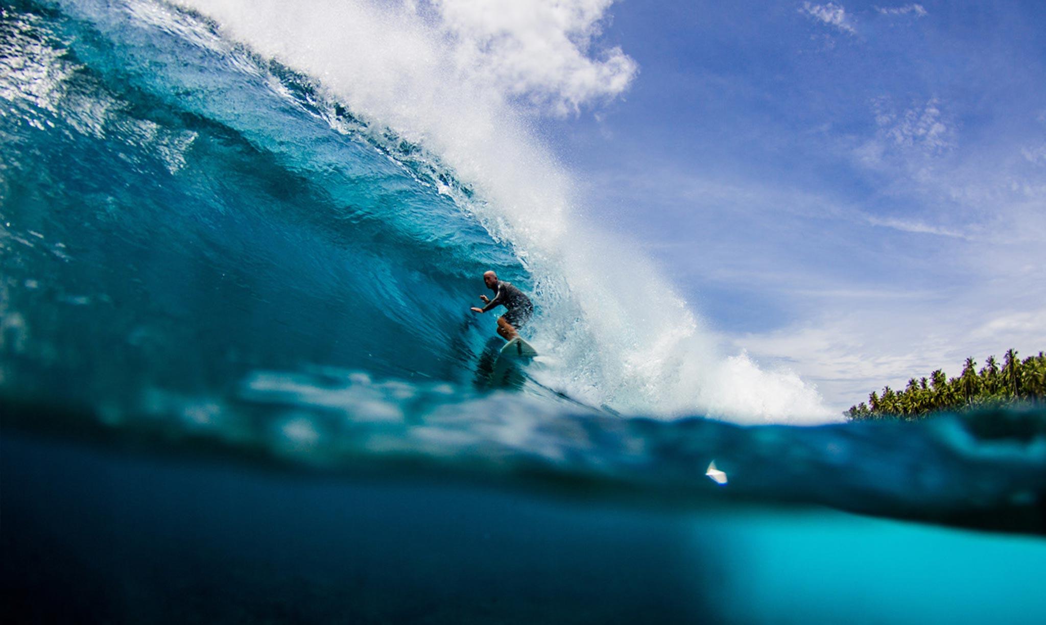 Mahi Mahi Waves 19
