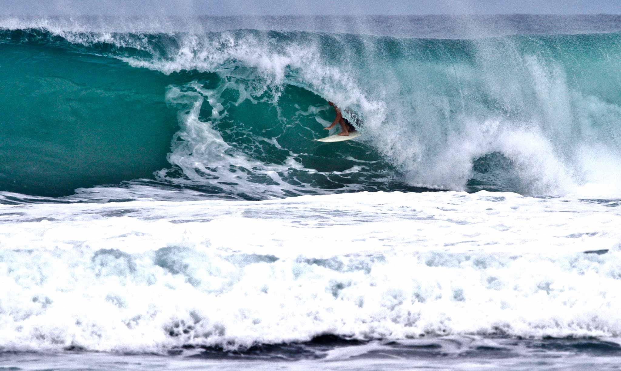 Mahi Mahi Waves 25