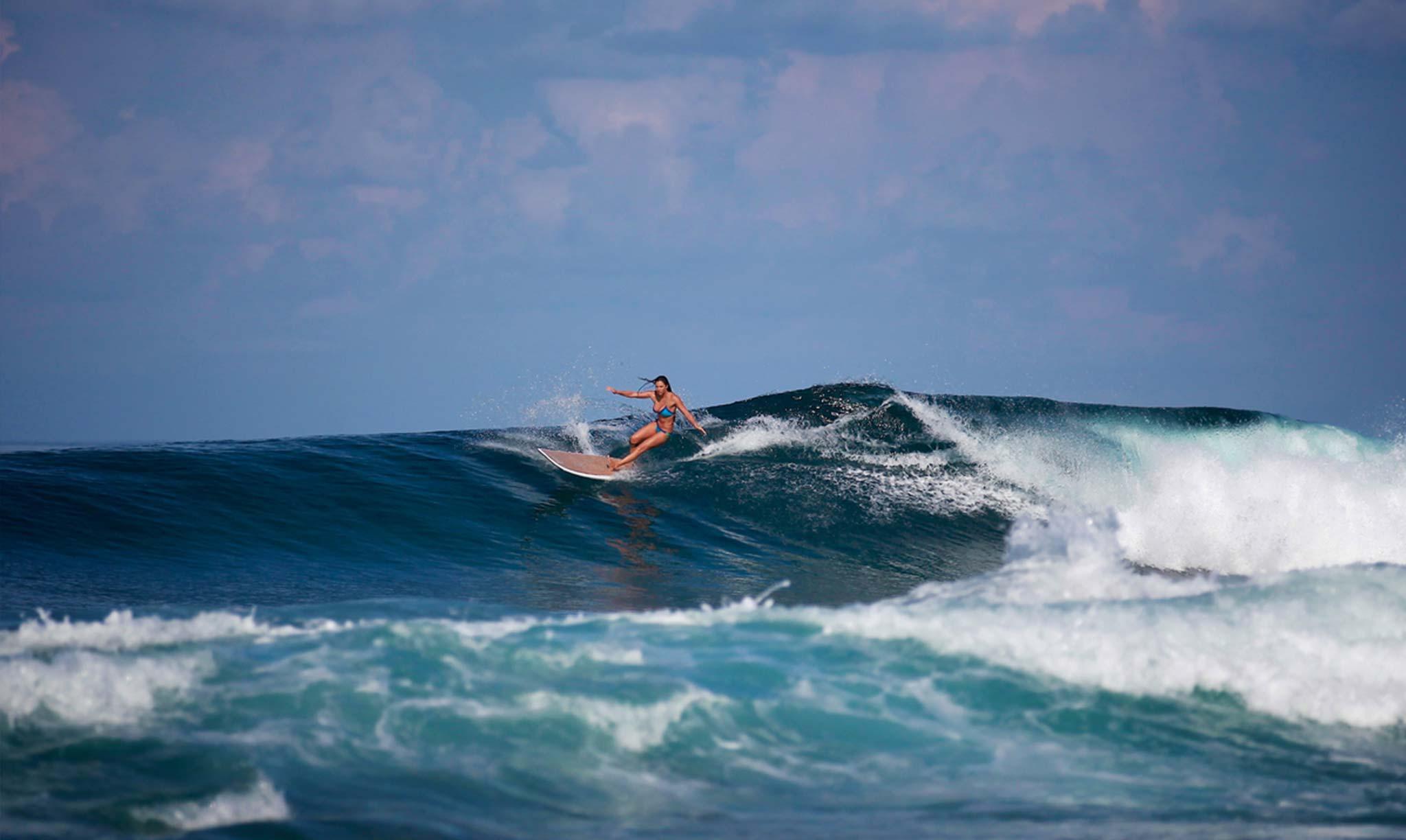 Mahi Mahi Waves 28
