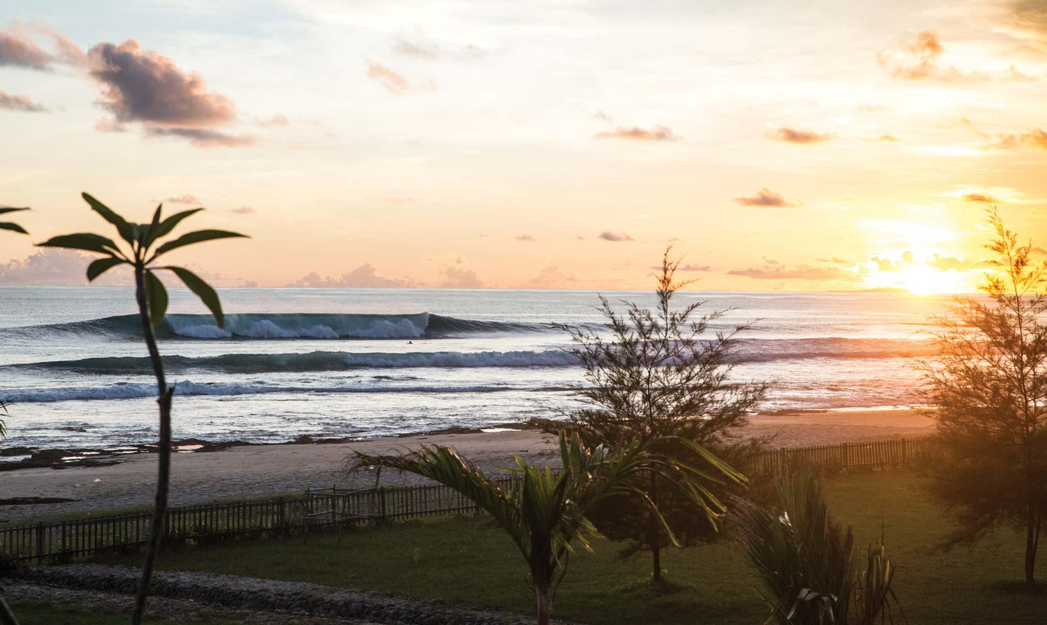 Mahi Mahi Waves 3