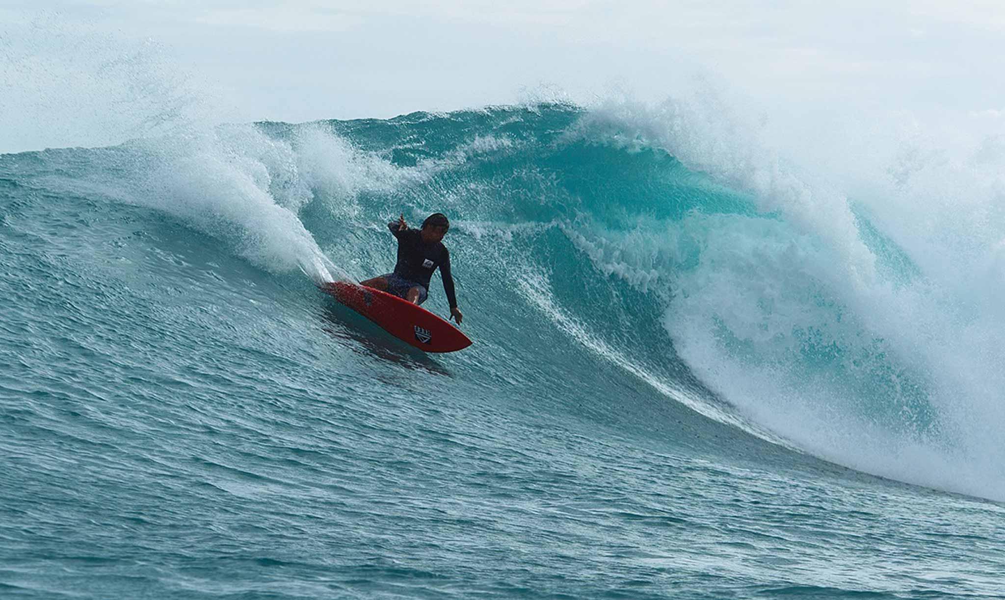 Mahi Mahi Waves 31